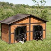 Boomer ; George Darker Stain Duplex Dog House with FREE Dog Doors