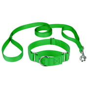 Country Brook Design Martingale Heavyduty Nylon Dog Collar/Double Handle Leash