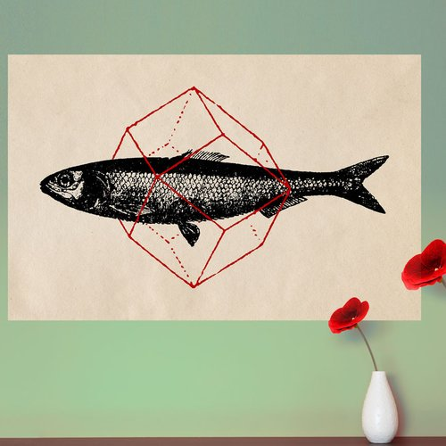 My Wonderful Walls Geometry Fish Wall Decal