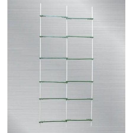 EcoTrellis Expandable Trellis,Plant Ladder,Support Ladder,Tomato Trellis,Cucumber Trellis, 5Ft High, 2