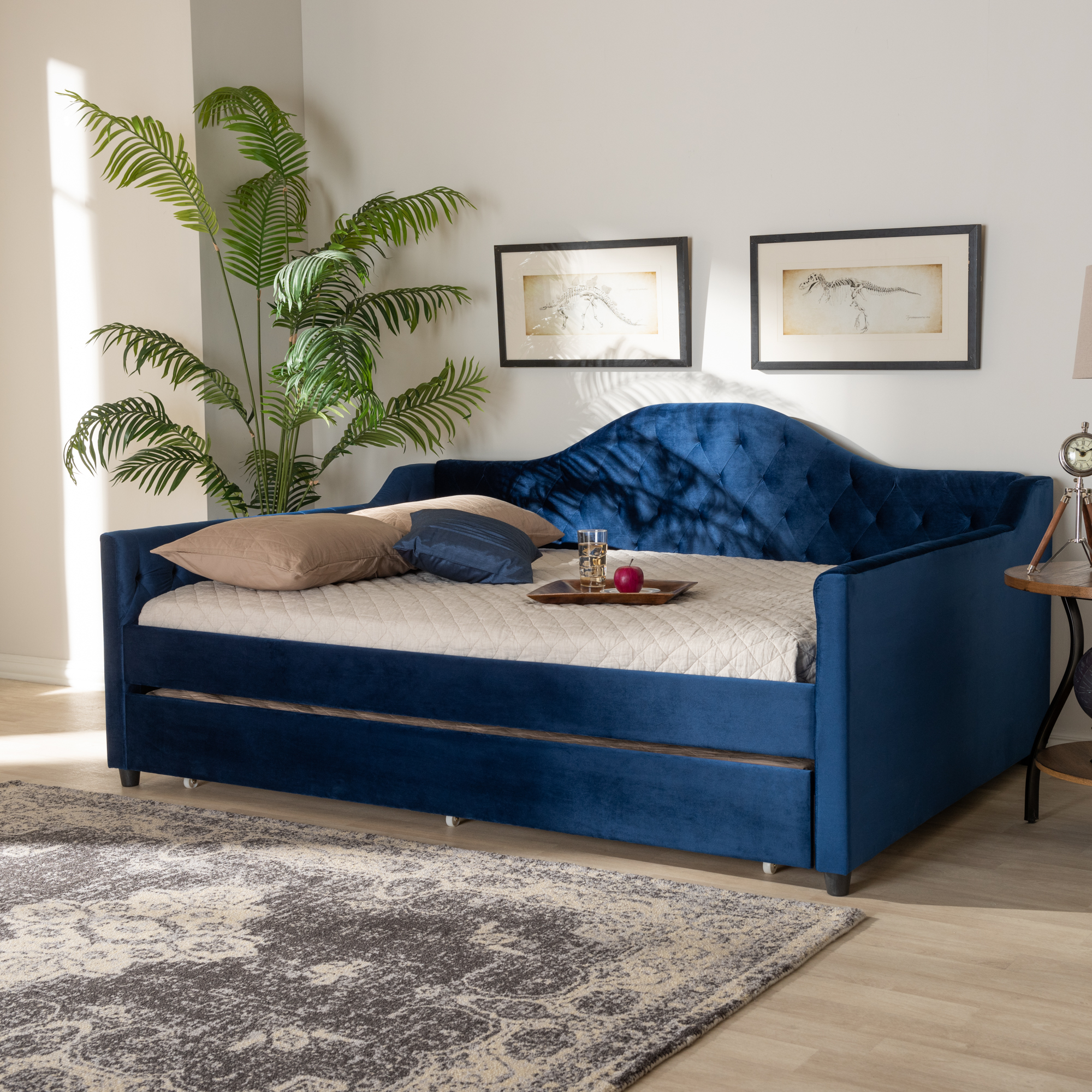 - Baxton Studio Perry Royal Blue Velvet Button Tufted Queen Size