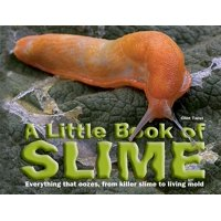 A Little Book of Slime (Hardcover)