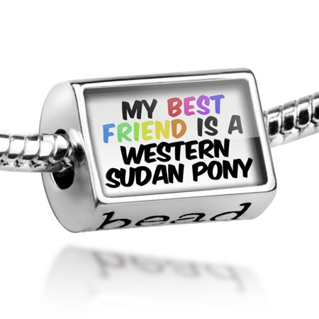 Bead My best Friend a Western Sudan pony, Horse Charm Fits All European