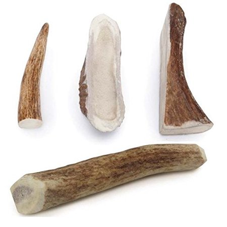 Natural Dental Chews - ELK ANTLER DOG DENTAL CHEWS Natural Way to Clean Your Dog's Teeth Bulk Too!(Medium - 6