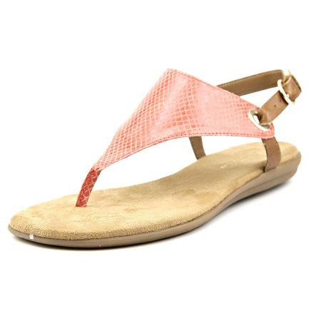 9f287840e80e Aerosoles - Aerosoles Conchlusion Women US 7 Pink Gladiator Sandal ...