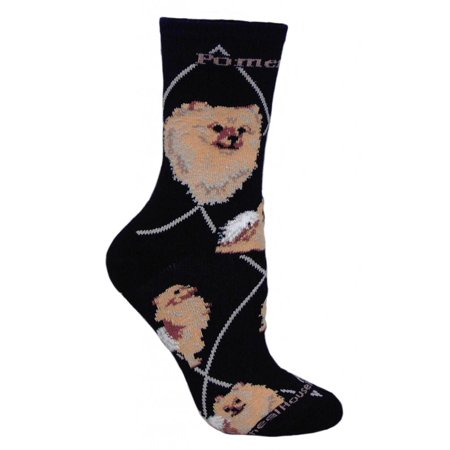 Pomeranian Dog Black Large Cotton Socks