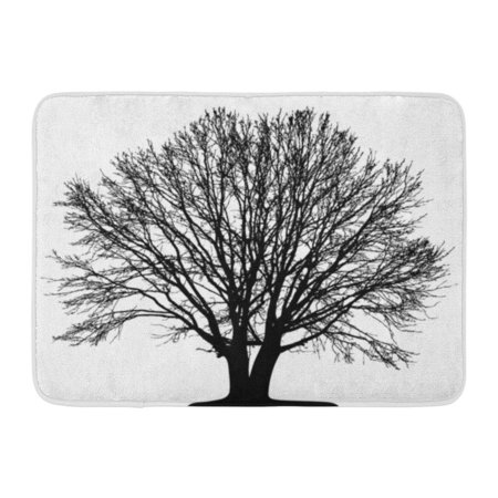 YUSDECOR Lonely Silhouette Tree Branch Countryside Forest Ground Lone Nature Rug Doormat Bath Mat 23.6x15.7 inch - image 1 of 1