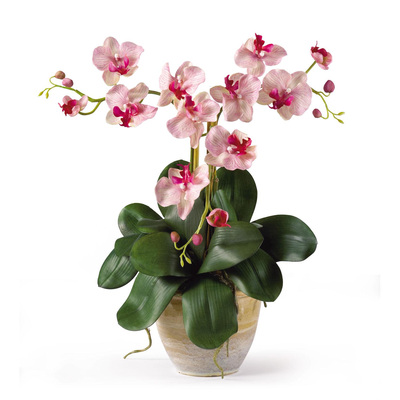 Home Decorative Triple Mini Phalenopsis Silk Orchid Arrangement