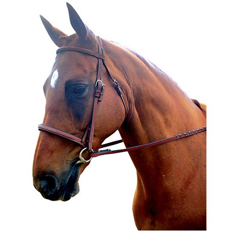 Kincade Padded Fancy Stitched Bridle Warmblood (Padded Fancy Stitched Bridle)