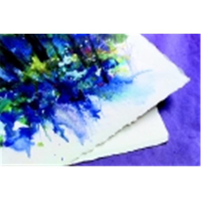 "Arches 140 pound Watercolor Paper Cold Press, 22"" x 30"", Off White, Pack of 10"