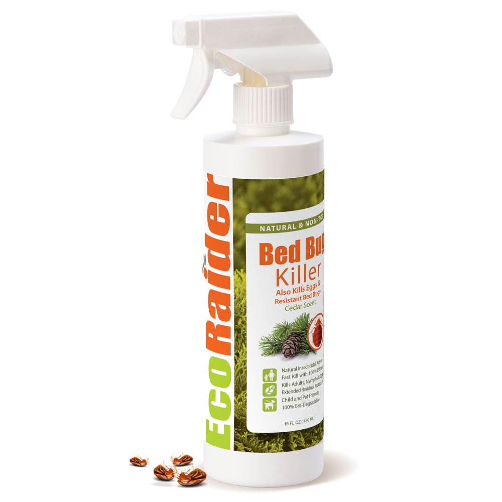 ecoraider bed bug killer spray 16 oz, 100% killing effeicay with