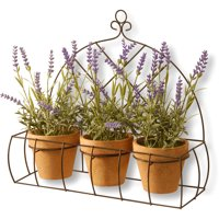 "17"" Potted Lavender Plants in Decorative Rack"
