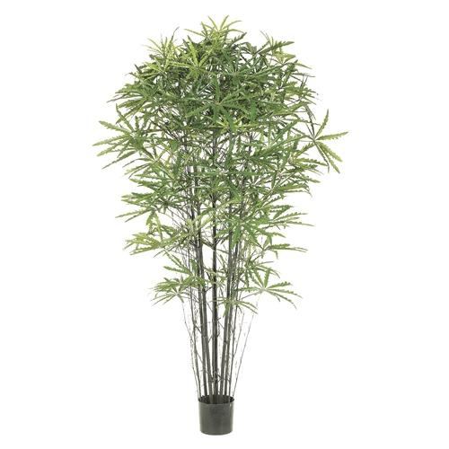 Pack of 2 Decorative Aralia Bamboo Trees with Round Pots 7'
