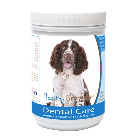 Dog Breeds Springer Spaniel (Healthy Breeds English Springer Spaniel Breath Care Soft Chews for Dogs 60 Count )