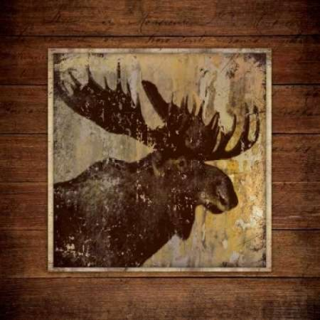Posterazzi Moose Portrait Canvas Art - Stephanie Marrott (24 x 24) (Moose Portrait)