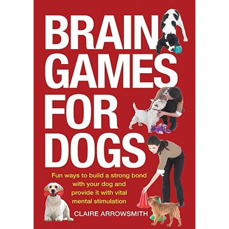Brain Games for Dogs : Fun Ways to Build a Strong Bond with Your Dog and Provide It with Vital Mental (Best Way To Build A Bankroll)