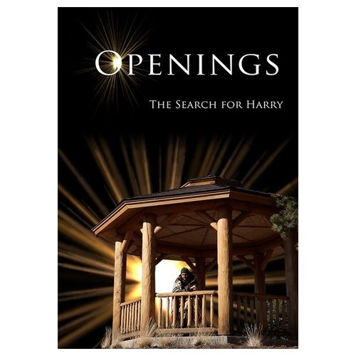 Openings: The Search For Harry (2012)