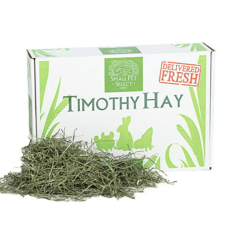 Small Pet Select 2nd Cutting Timothy Hay Pet Food, 12-Pound ()