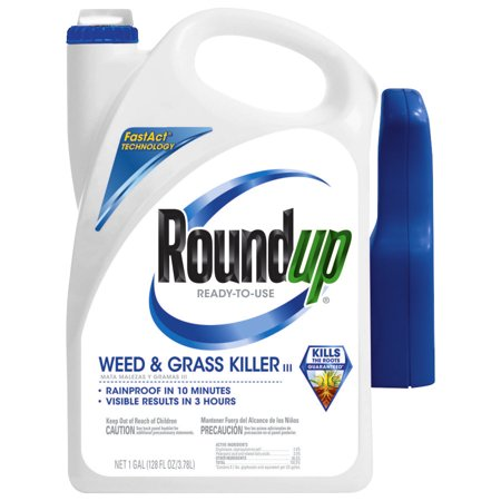 Roundup Ready-To-Use Weed & Grass Killer III Trigger (Best Grass Killer For Flower Beds)