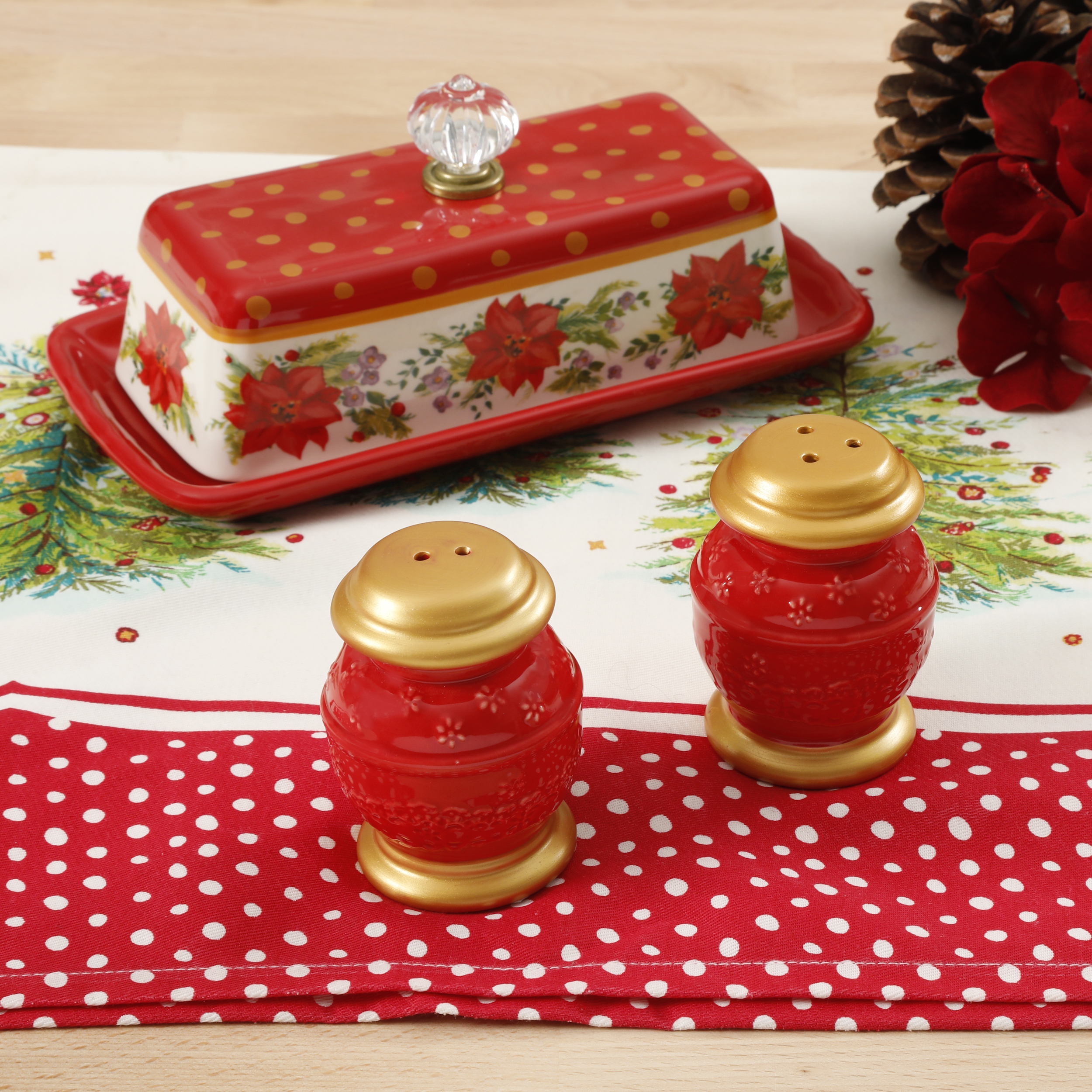 The Pioneer Woman Holiday Red Salt and Pepper & Butter Dish Set