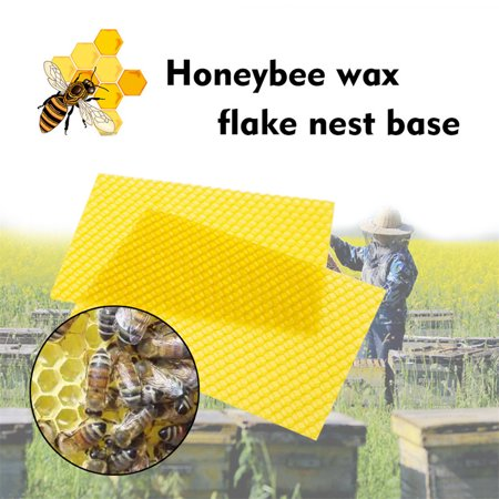 - Beehive Wax Frames Base Sheets Bee Comb Honey Frame