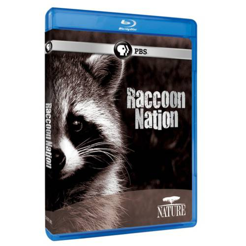 Nature: Raccoon Nation (Blu-ray)