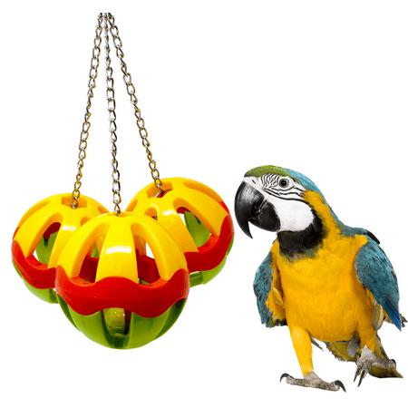 Bonka Bird Toys 1479 Huge Plastic Three - Hue Ball
