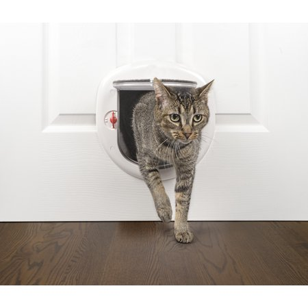 Premier Pet Locking Pet Door for Cats or Small Dogs up to 25 Pounds (Dog Doors For Stairs)