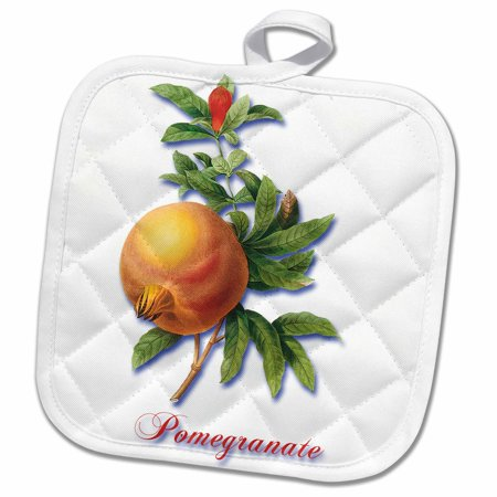 3dRose Large Ripe Pomegranate and Flower Botanical Fruit Print - Pot Holder, 8 by 8-inch
