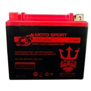 Honda TRX250 FourTrax Recon,ES, 1997-2010 YTX12-BS(MF) SLA Powersport Replacement ATV Battery by Neptune