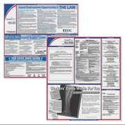 COMPLYRIGHT EFEDSTCRPSECTX Labor Law Poster Kit,TX,English,2-1/2inW G1878978