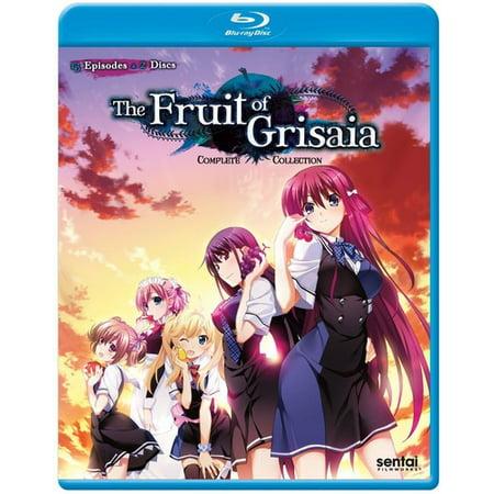 Fruit of Grisaia: Complete Collection (Fruits Basket Dvd Set)