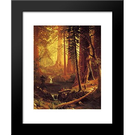 Giant Redwood Trees of California 20x24 Framed Art Print by Bierstadt,