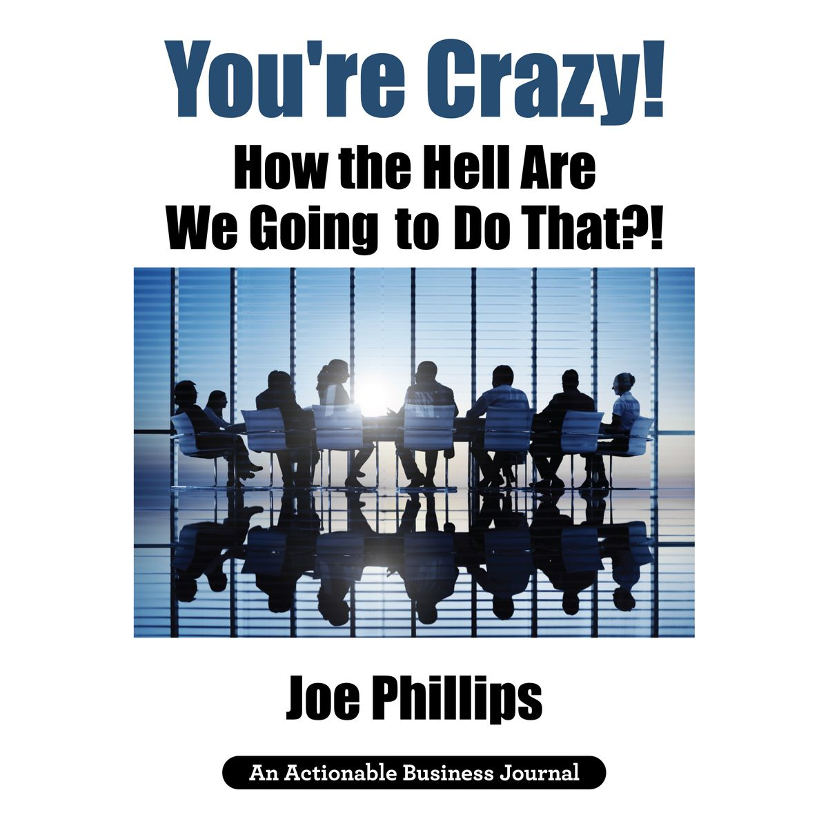 You're Crazy! How the Hell Are We Going to Do That?! - Audiobook