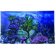 "BioBubble 3D Background Coral Reef, 20 Gallons, 24"" x 12"""