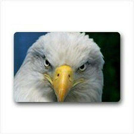Eagles Starter Mat Rug (WinHome Acute Eagle Doormat Floor Mats Rugs Outdoors/Indoor Doormat Size 23.6x15.7 inches )
