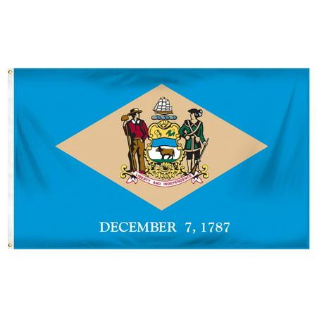 Delaware Today Online - Delaware 3ft x 5ft Spun Heavy Duty Polyester Flag