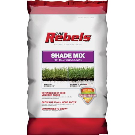 SEED TALL FESCUE SHADE MIX 3LB