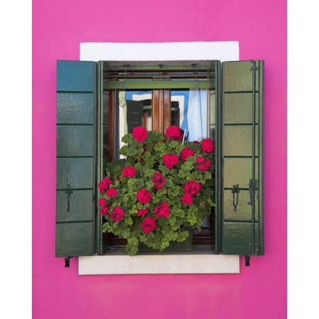 Pink Wall And Green Shutters Burano Italy Canvas Art   Chris Upton  Design Pics  12 X 16
