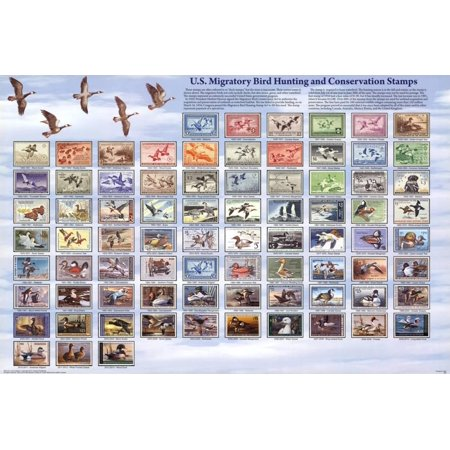U.S. Migratory Bird Hunting and Conservation Stamps Duck Stamps