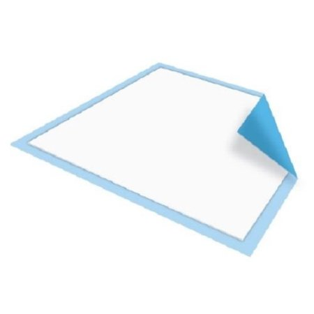 Platinum Care Pads Disposable Underpads Size 17X24 Case Of 300 Blue And  White Great For Changing