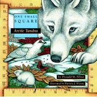 One Small Square: Arctic Tundra (Paperback)