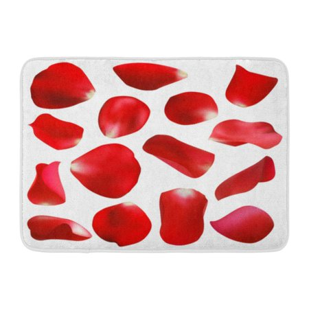 GODPOK Fallen Pink Flower Red Rose Petals White Purple Heart Anniversary Rug Doormat Bath Mat 23.6x15.7 inch (Red Purple Hearts)