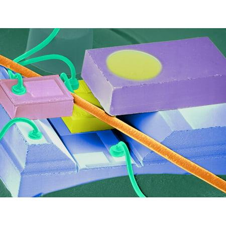 Coloured SEM of a Laser Unit for Fibre Optics Print Wall Art By Volker Steger (Laser Print Unit)