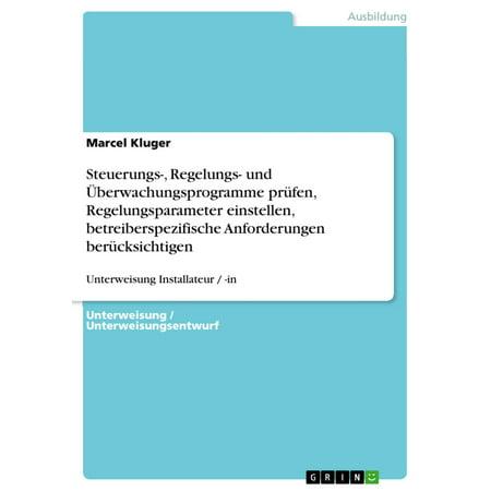 Steuerungs-, Regelungs- und Überwachungsprogramme prüfen, Regelungsparameter einstellen, betreiberspezifische Anforderungen berücksichtigen - eBook (Brille Einstellen)
