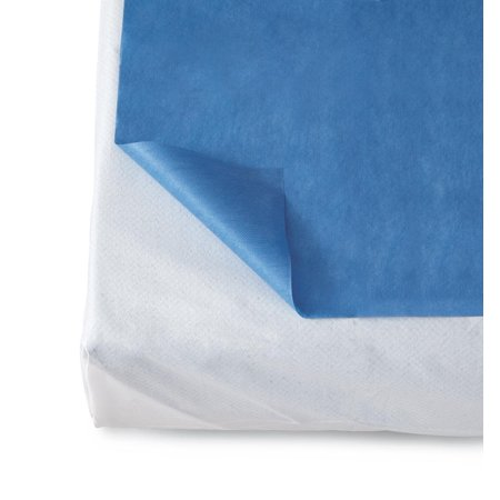 Disposable Bed Sheets (25 Per Case)
