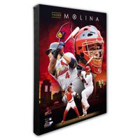 "St. Louis Cardinals Yadier Molina 16"" x 20"" Player Canvas - No Size"