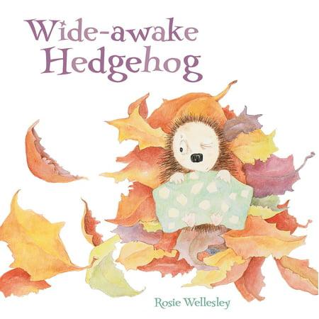 The Wide Awake Hedgehog](Taylor The Hedgehog)