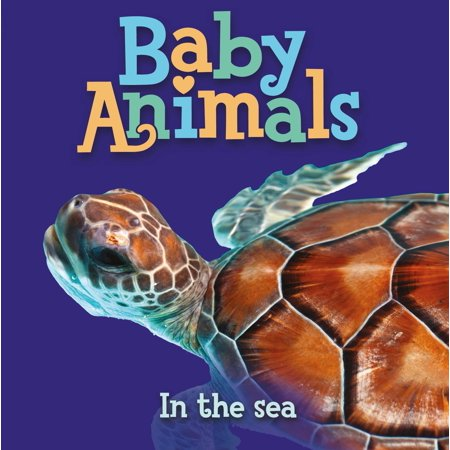 Baby Animals In the Sea - Sea Babies