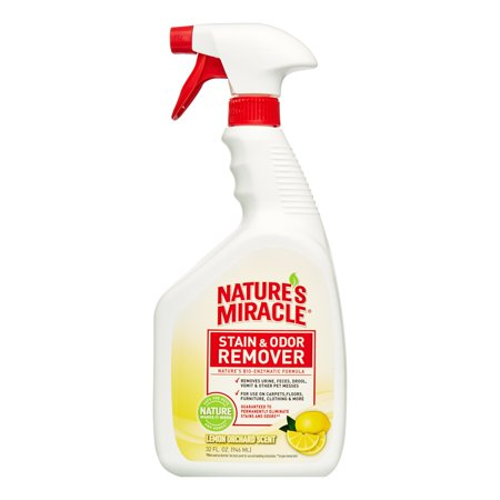 Nature S Miracle Stain And Odor Remover Lemon Scent Reviews